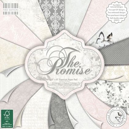 Set cartoane scrapbooking 20,3х20,3 cm - FEPAD091