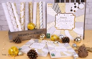 Set cartoane scrapbooking 15,2x15,2cm - White Christmas FEPAD223X19