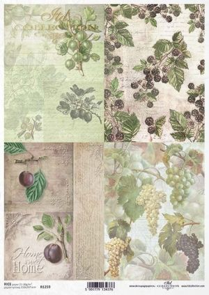Hartie de orez pentru decoupage A4 - Grapes, gooseberries, plums, blackberries ITD-R1259