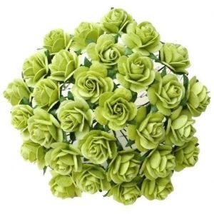 Flori hartie 10 buc - LIGHT LIME GREEN MULBERRY PAPER OPEN ROSES MKX-634