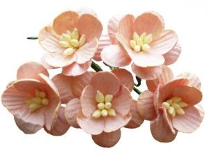 Flori hartie 5 buc - PEACH MULBERRY PAPER CHERRY BLOSSOMS MKX-037